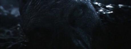 Eragon -_00164
