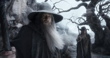 Lo Hobbit - La Desolazione Di Smaug - Gandalf