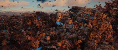 Lo Hobbit - La Desolazione Di Smaug - Terra di Mezzo