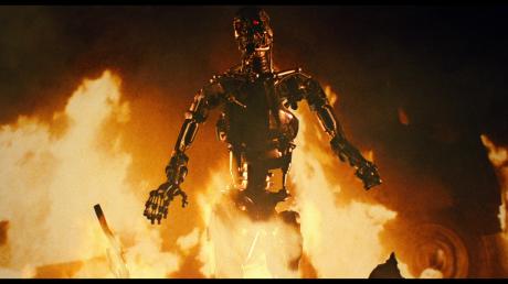 Terminator - Endoscheletro