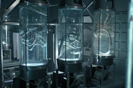 Aliens - Scontro Finale - Facehugger