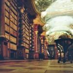 Il fascino dimenticato delle biblioteche