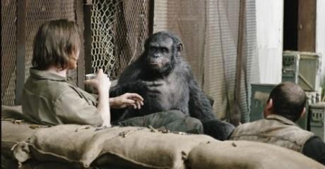 Apes Revolution - Il Pianeta Delle Scimmie - Uomini e scimmie