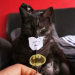 Parliamo male dei Batman di Nolan