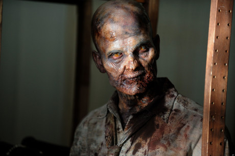 The Walking Dead - Zombie