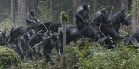 Apes Revolution - Il Pianeta Delle Scimmie - Scimmie a cavallo