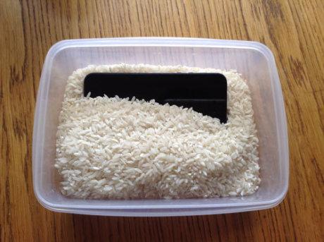 Cellulare nel riso