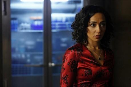 Agents Of S.H.I.E.L.D. - Raina