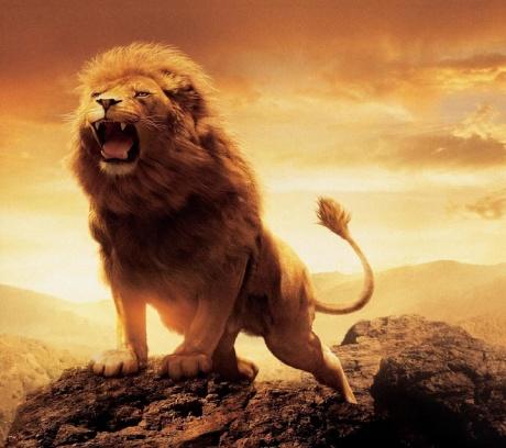 Le Cronache Di Narnia - Il Leone, La Strega E L'Armadio - Aslan